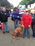 Our Aussie guests take their mascot where ever they go