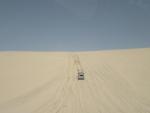 The Saturday desert safari